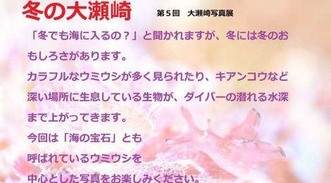 2014.12.11 第5回大瀬崎写真展「冬」@あわしまマリンパーク 展示開始